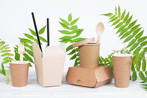 assiette jetable feuille de palmier